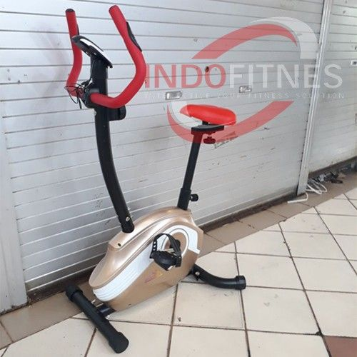 Medium Magnetic Bike Hanatha RA-1035